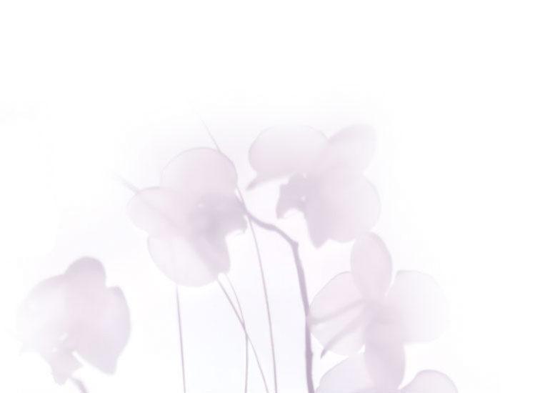 Crema Correzione Macchie SPF 20
